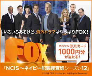 いろいろあるけど、海外ドラマはやっぱりFOX!『NCIS ~ネイビー犯罪捜査班 シーズン12』